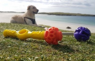 Public Choice Award goes to James McIlvenna of Dog Day Design Ltd. for K9 Connectables Dog Toys!